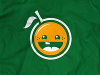 Nutrislice Baby Orange
