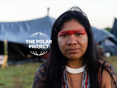 The Polar Project articles longreads webdesign climate change website branding logo