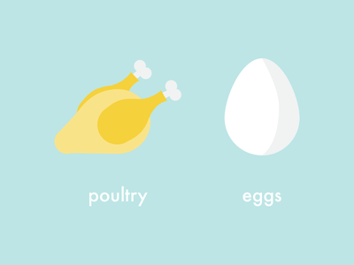 Poultry Eggs chicken food eggs poultry design creative flat animation gif vector illustration 2d