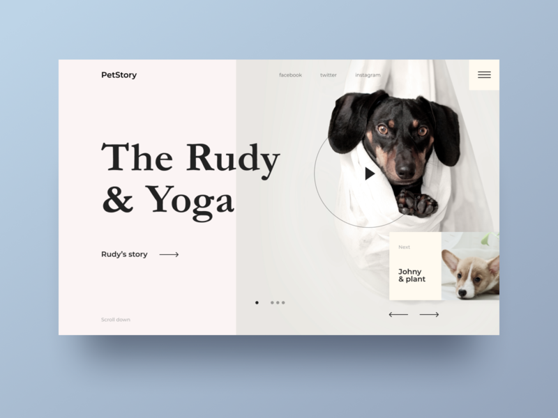 Pet Story landing page design landing pets dog pet