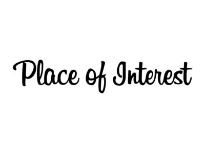 Place of Interest logotype script billabong custom typography logo