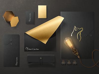 Author Brand Identity for Matt Cricchio brochure design print branding design logo branding design