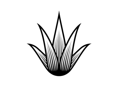 Agave Mark illustration engraving icon logo mark tequila agave
