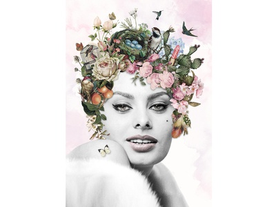 Surreal Sophia Loren surealism sureal portrait bird beauty flower digital art digital illustration adobe photoshop illustration collage art collage photoshop