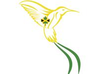 The Doctor Bird Logo
