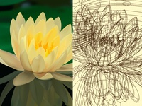 Adobe illustrator-Lotus-Grid lines