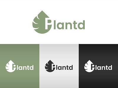 Plantd logo concept monstera plantcare plant nature green leaf branding brand logotype logodesign logo
