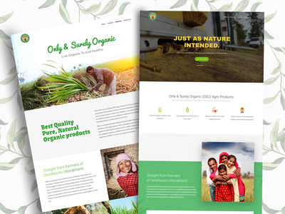 Website Design for Organic Food Brand illustrator typography landingpage website design ui website web ux illustration design branding