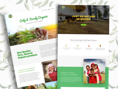 Website Design for Organic Food Brand