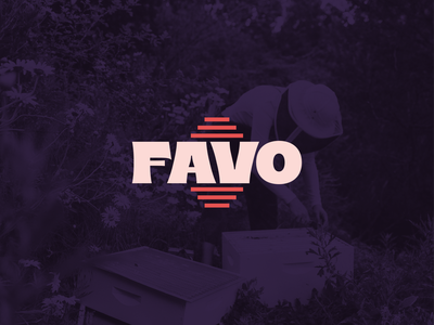 Favo Logotype bee logo hive bee hive typography retro brice logo logotype honeycomb italian bee keeper branding brand honey honey bees honey bee bees beeswax favo