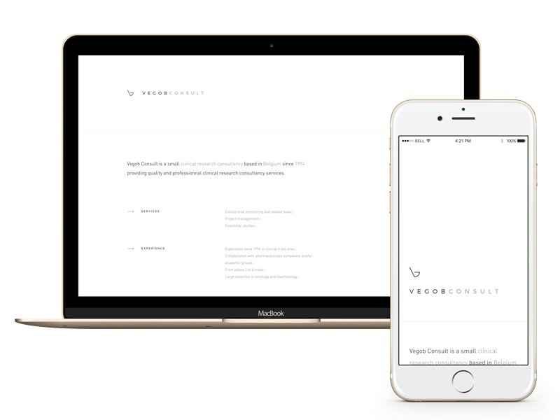 Vegob Consult - New website new simple space white minimalist website