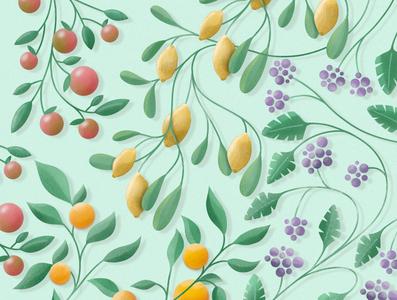 Fruity botanical botanic botanical illustration botany botanical art apples lemons grapes oranges orange apple lemon drawing artwork procreate illustration fruit illustration fruity fruit