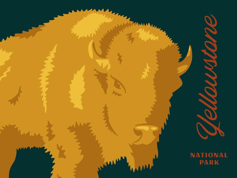 Yellowstone illustration animal buffalo outdoors nature park national park yellowstone