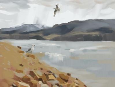 Horsetooth Hunters environment art conceptart clouds seagulls lakes wildlifeart horsetooth reservoir landscape digital painting