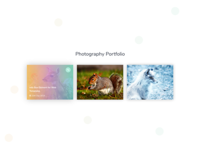 Portfolio Element - 3 for Web Templates