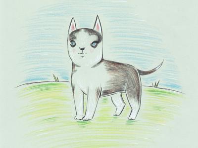 dog blue eyes drawing animal dog illustration pencil dog bodanique bo-danique