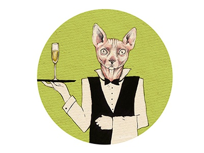 Hairless Cat Butler illustration drinks cat butler green beercoaster design animal champagne alcohol beer wine