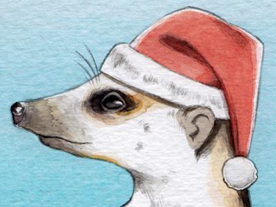 Christmas Meerkat bodanique bo-danique eye blue pencil watercolor illustration design card animal meerkat christmas