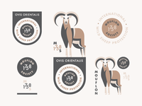 Mouflon (Branding Explorations)