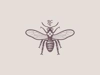 Bee 🐝
