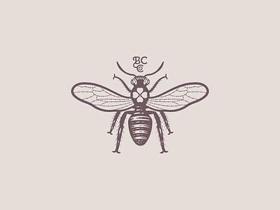 Bee 🐝 peter voth design illustrator branding graphic design logo illustration line art etching engraving