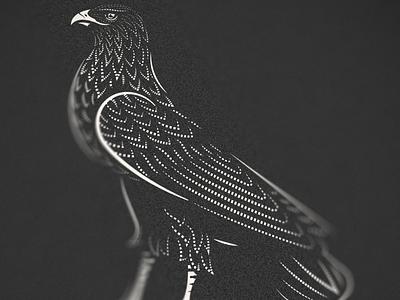Aquila pt. III graphic design eagle line art illustrator etching peter voth design icon engraving vector badge illustration