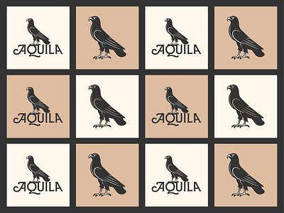 Aquila pt. IV vector branding line art graphic design illustrator logo icon peter voth design illustration