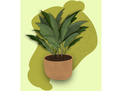 A plant procreate drawing illustration earth brown leaves green plant