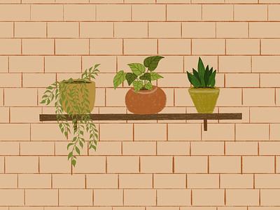 Plants procreate yellow warm minimal brick shelve orange green pots plants