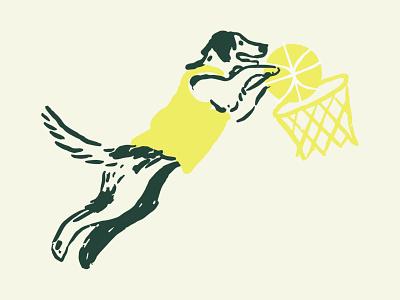 Basket Boi
