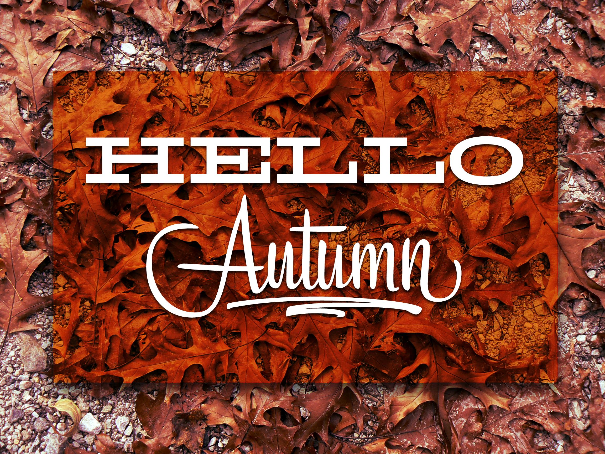 Hello Autumn Full.