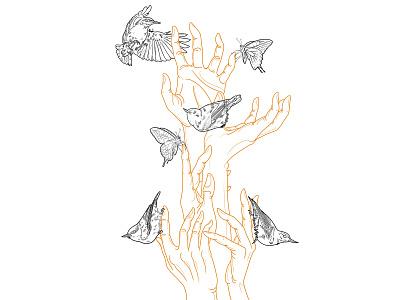 Nuthatches tattoo artist tattoostudio tattoo art butterflies nuthatches hand poses anatomical bird illustration bird tattoo design tattoos tattoo lettering georgian constantin illustration anotheroutsider