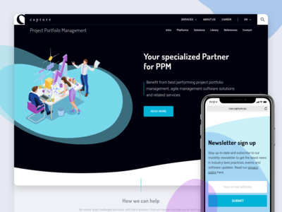 Capture site redesign