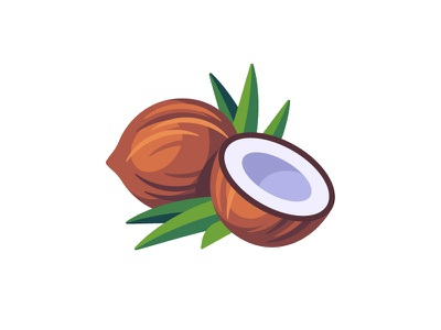Coconut coconut daily icon illustration vector design flat
