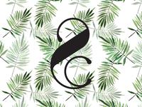 Riley & Clare Logo