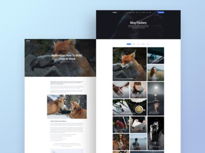Packery Blog Style | Cesis WordPress Theme