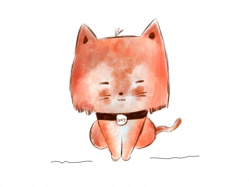 Red kitten tranmautritam