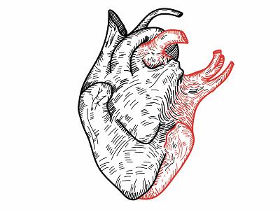 love possession details concept art lover lovers linework line art metaphor lovely design vector illustration minimal lineart vector art vector ilustrator valentines valentine illustration heart love