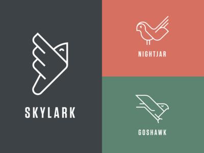 Ost Birds (WIP) icon skylark nightjar hawk logos birds