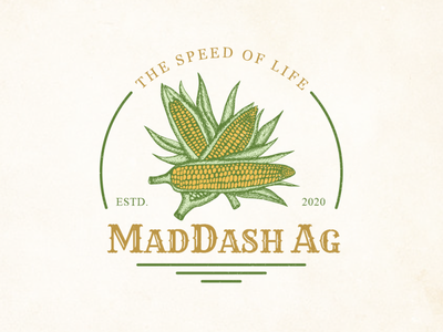 MadDash Ag Logo Design agriculture hand drawing corn hand drawn branding vintage sketch logo artwork