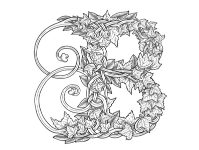 Monogram letter B with flowers in botanical style