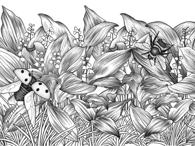 Lily of the valley illustration for colouring book