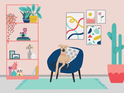 Fun with Spaces dailyillustration graphic illustration shelves colour interior whippet dog procreate art procreate