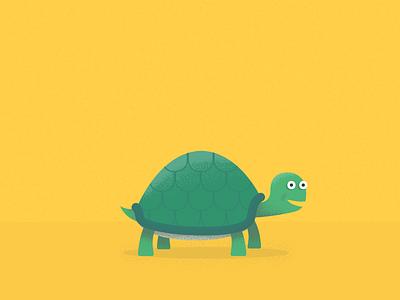 Tortoise color colour texture yellow face green illustration illustrator tortoise