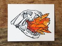 Skull Series: Mood