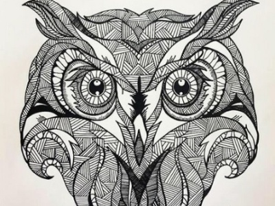 enigmatic owl illustrations artist pencil drawing illustration art animation drawart pencil sketch pencil art illustration daailyart