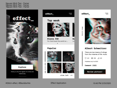 Effect Analysis Application xd distort glitch black and white rectangle cat