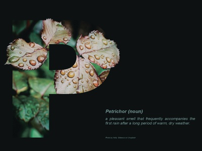 Words with beautiful meanings - Petrichor