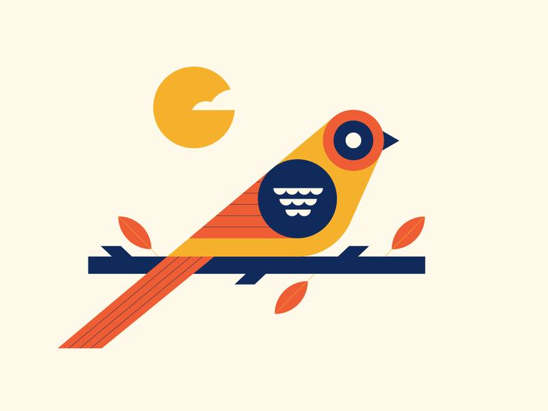 bird fall flat nature bird line geometric simple graphic design vector icons icon illustration