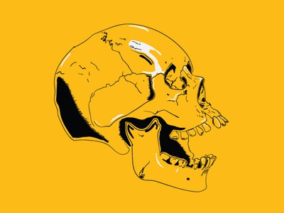 Yellow Skull Illustration shading stroke line death human skull vector illustrator illustration